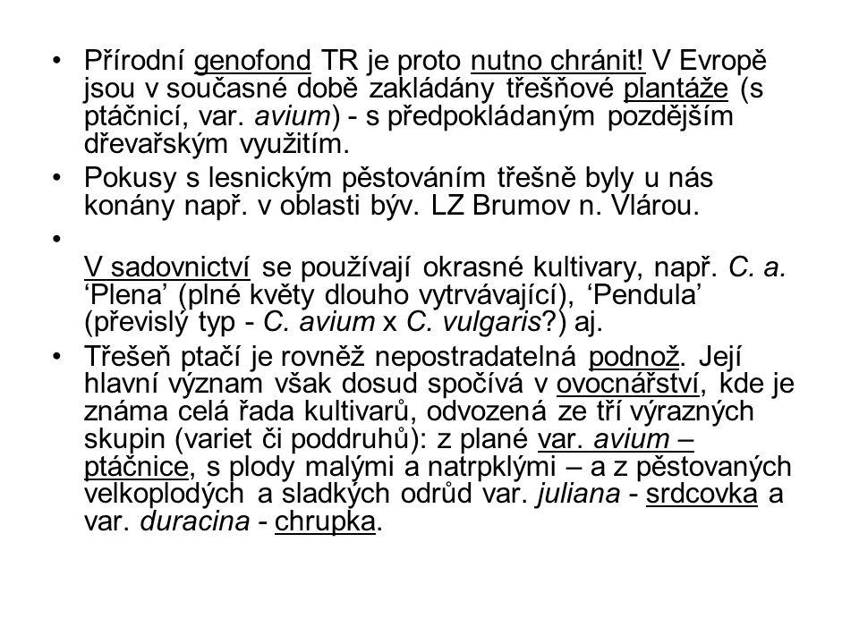 Přírodní genofond TR je proto nutno chránit.