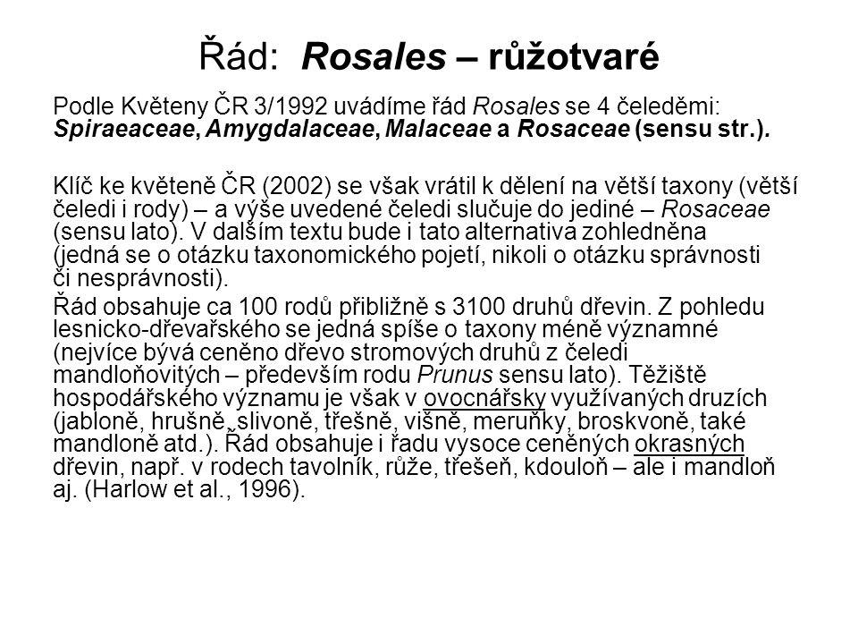 Řád: Rosales – růžotvaré Podle Květeny ČR 3/1992 uvádíme řád Rosales se 4 čeleděmi: Spiraeaceae, Amygdalaceae, Malaceae a Rosaceae (sensu str.).