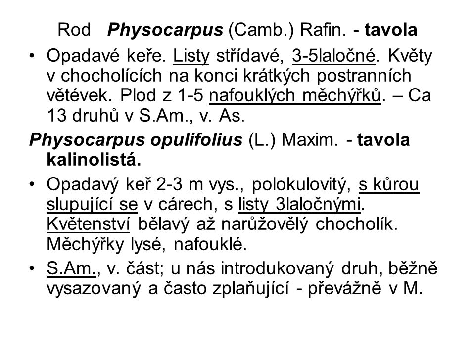Rod Physocarpus (Camb.) Rafin.- tavola Opadavé keře.