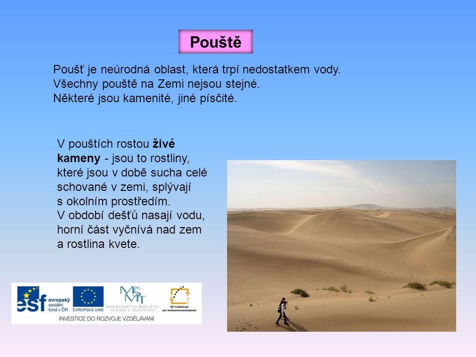 Pouště Poušť je neúrodná oblast, která trpí nedostatkem vody. Všechny pouště na Zemi nejsou stejné. Některé jsou kamenité, jiné písčité. V pouštích ro
