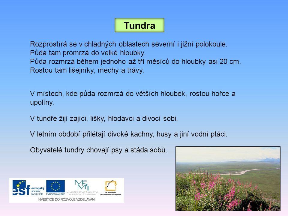 Tundra Rozprostírá se v chladných oblastech severní i jižní polokoule. Půda tam promrzá do velké hloubky. Půda rozmrzá během jednoho až tří měsíců do
