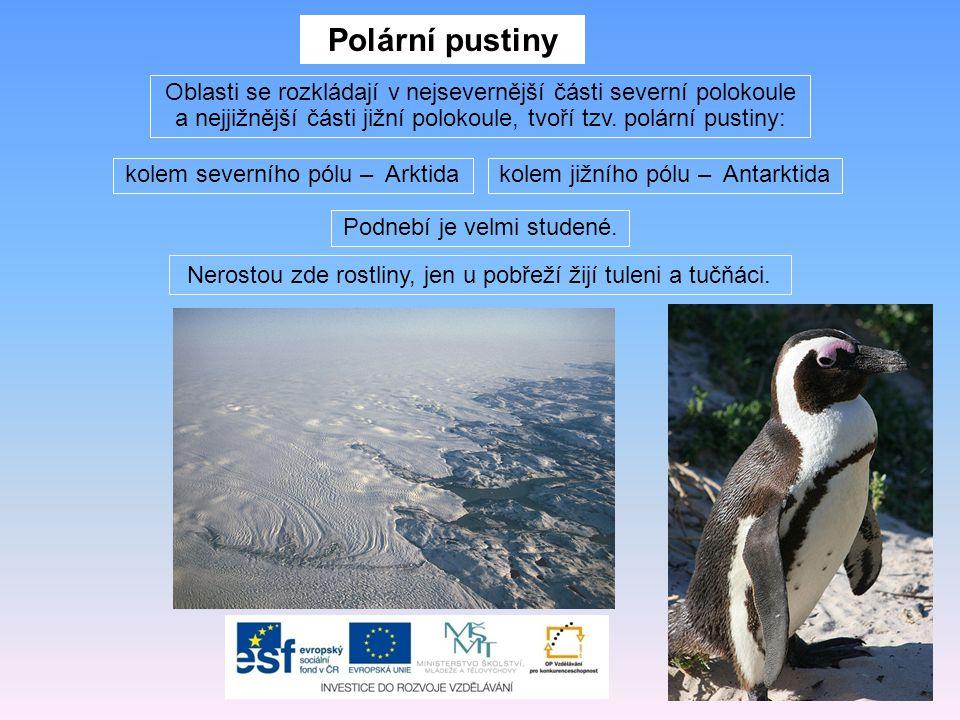 Polární pustiny Oblasti se rozkládají v nejsevernější části severní polokoule a nejjižnější části jižní polokoule, tvoří tzv. polární pustiny: Podnebí