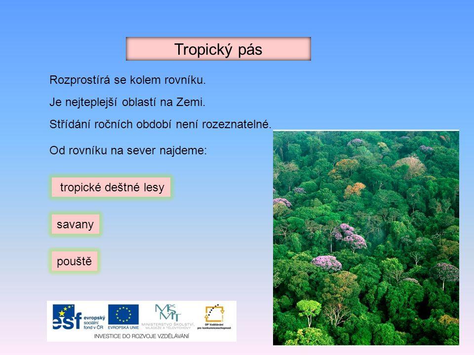 Tropický pás Rozprostírá se kolem rovníku. Je nejteplejší oblastí na Zemi. Střídání ročních období není rozeznatelné. tropické deštné lesy savany pouš