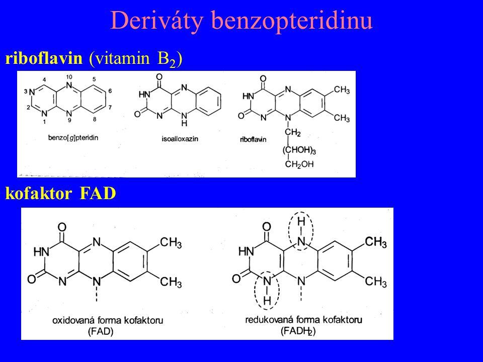 Deriváty benzopteridinu riboflavin (vitamin B 2 ) kofaktor FAD