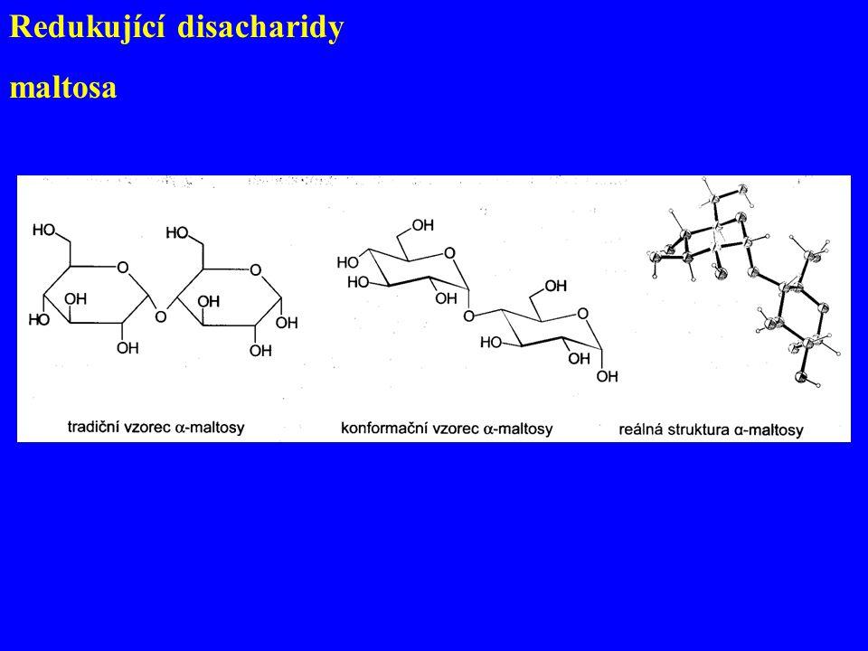Redukující disacharidy maltosa