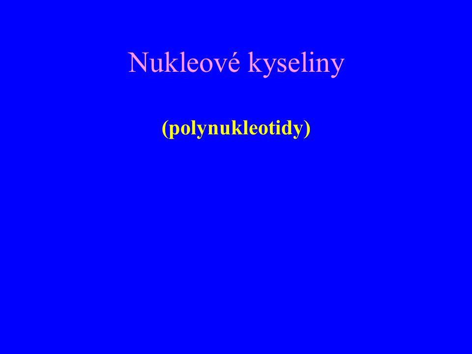 Nukleové kyseliny (polynukleotidy)