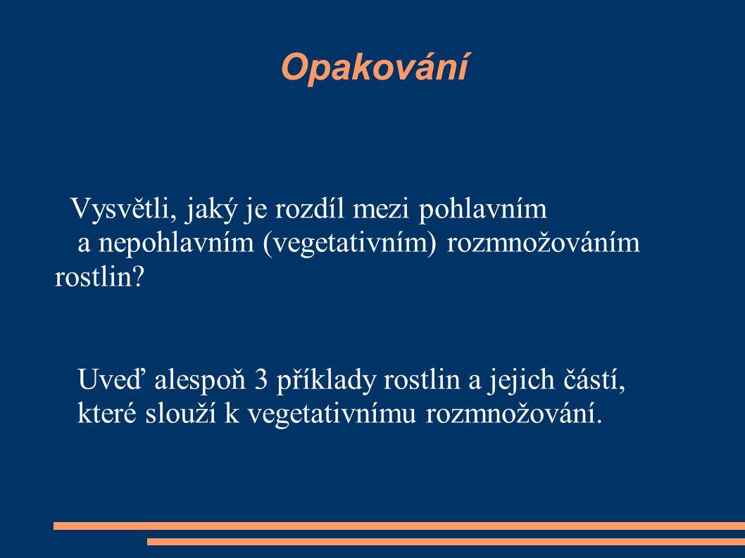 Opakování Vysvětli, jaký je rozdíl mezi pohlavním a nepohlavním (vegetativním) rozmnožováním rostlin.