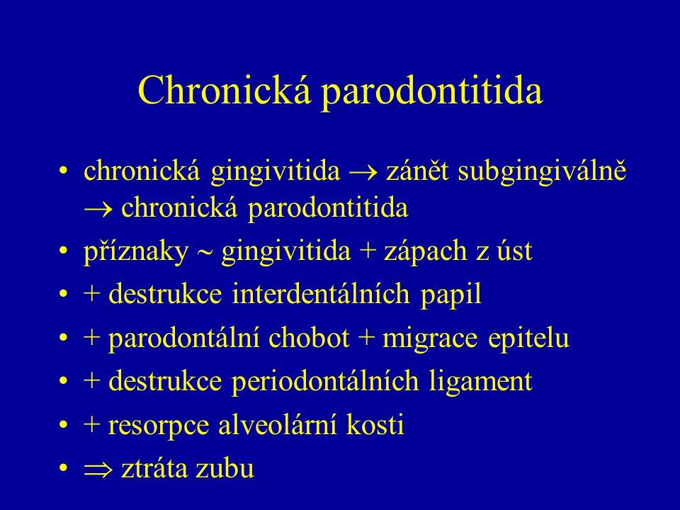 Chronická parodontitida chronická gingivitida  zánět subgingiválně  chronická parodontitida příznaky  gingivitida + zápach z úst + destrukce interdentálních papil + parodontální chobot + migrace epitelu + destrukce periodontálních ligament + resorpce alveolární kosti  ztráta zubu