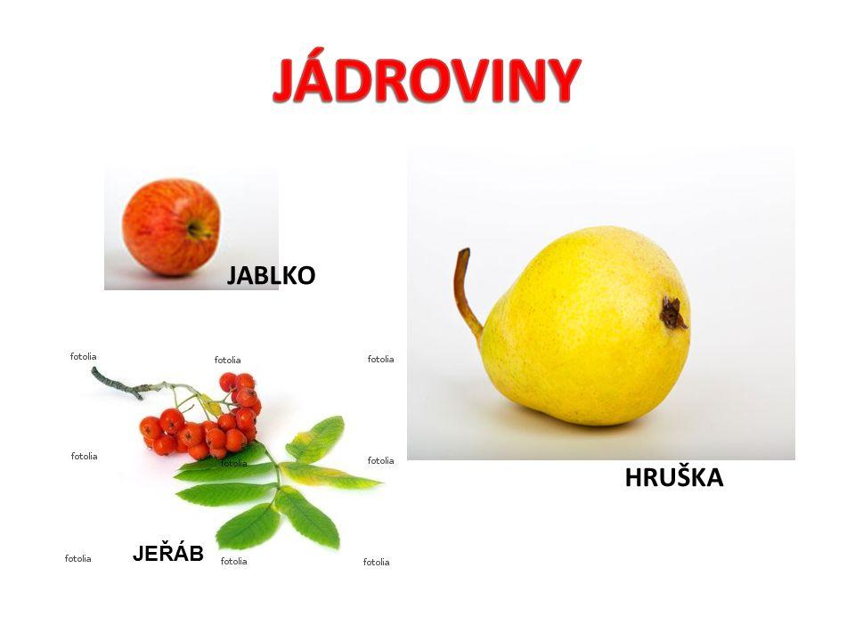 HRUŠKA JABLKO JEŘÁB