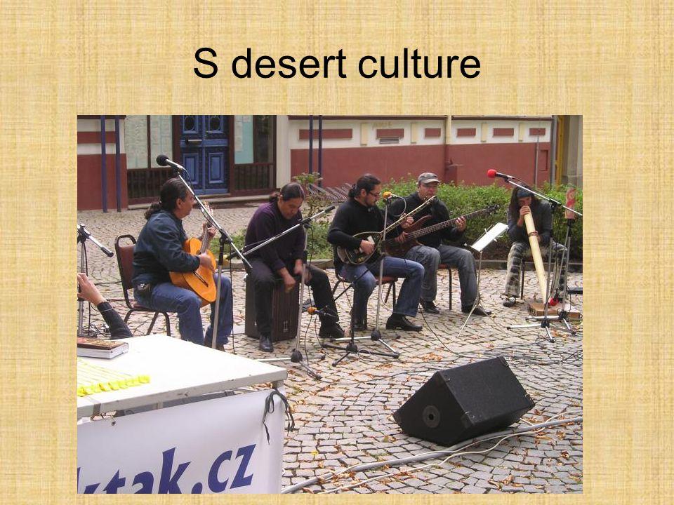 S desert culture