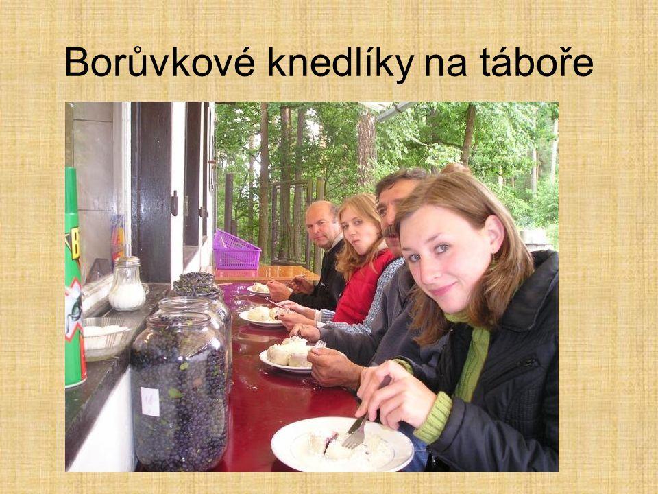 Borůvkové knedlíky na táboře