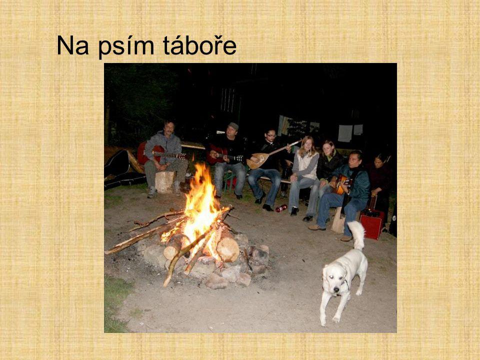 Na psím táboře