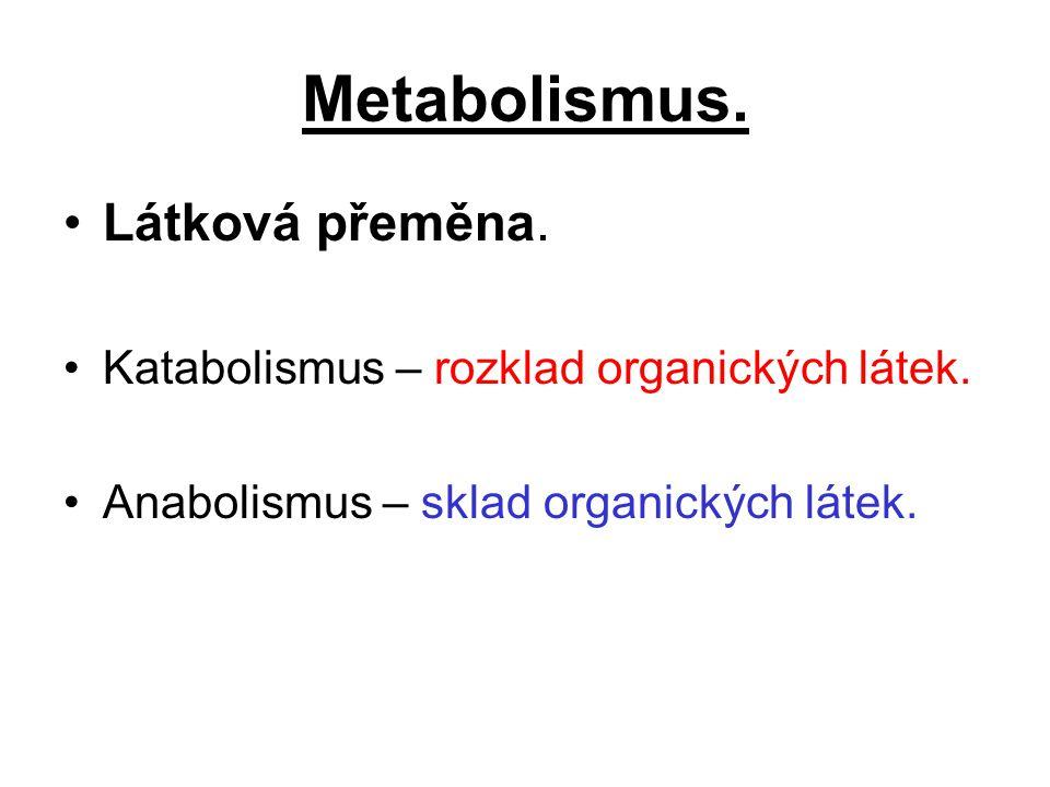 Metabolismus. Látková přeměna. Katabolismus – rozklad organických látek. Anabolismus – sklad organických látek.