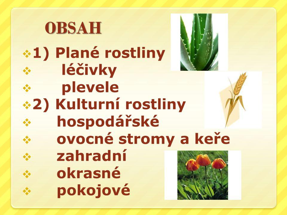 OBSAH  1) Plané rostliny  léčivky  plevele  2) Kulturní rostliny  hospodářské  ovocné stromy a keře  zahradní  okrasné  pokojové