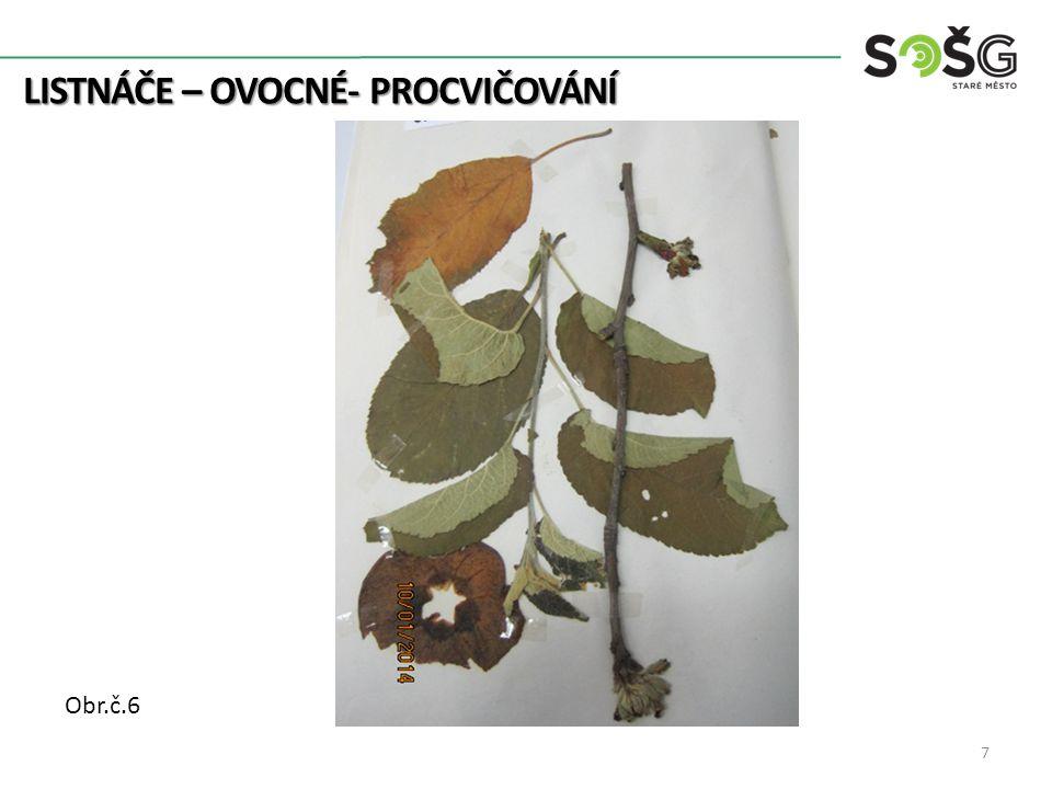LISTNÁČE – OVOCNÉ- PROCVIČOVÁNÍ 7 Obr.č.6