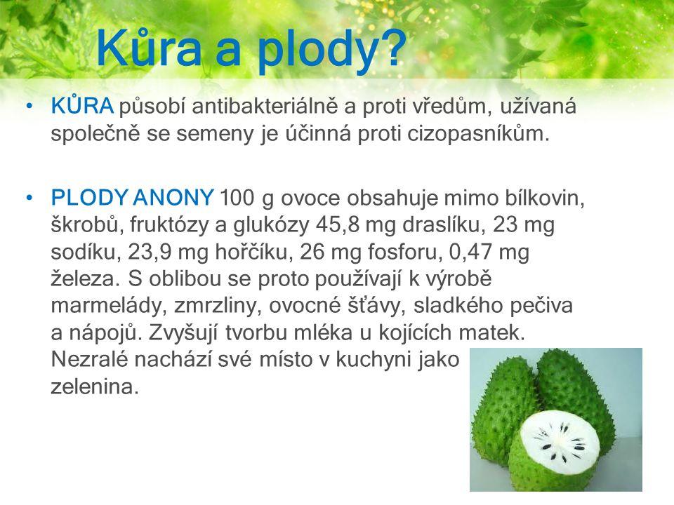 Kůra a plody? KŮRA působí antibakteriálně a proti vředům, užívaná společně se semeny je účinná proti cizopasníkům. PLODY ANONY 100 g ovoce obsahuje mi