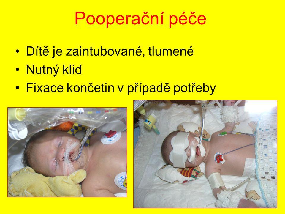 Pooperační péče Dítě je zaintubované, tlumené Nutný klid Fixace končetin v případě potřeby