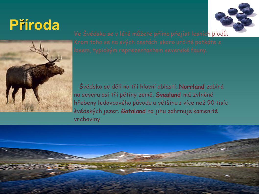 ř Příroda Ve Švédsku se v létě můžete přímo přejíst lesních plodů.