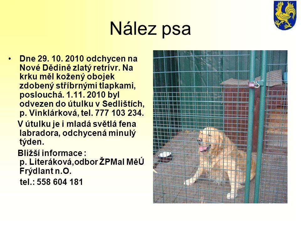 Nález psa Dne 29. 10. 2010 odchycen na Nové Dědině zlatý retrívr. Na krku měl kožený obojek zdobený stříbrnými tlapkami, poslouchá. 1.11. 2010 byl odv