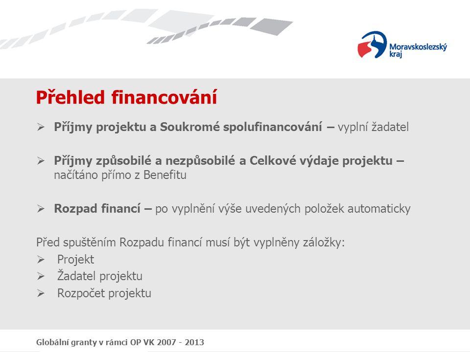 Globální granty v rámci OP VK 2007 - 2013 Přehled financování  Příjmy projektu a Soukromé spolufinancování – vyplní žadatel  Příjmy způsobilé a nezp