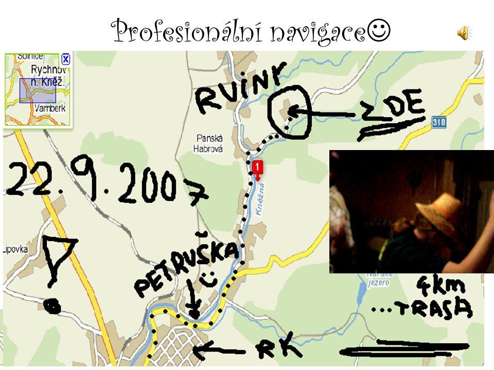 Profesionální navigace