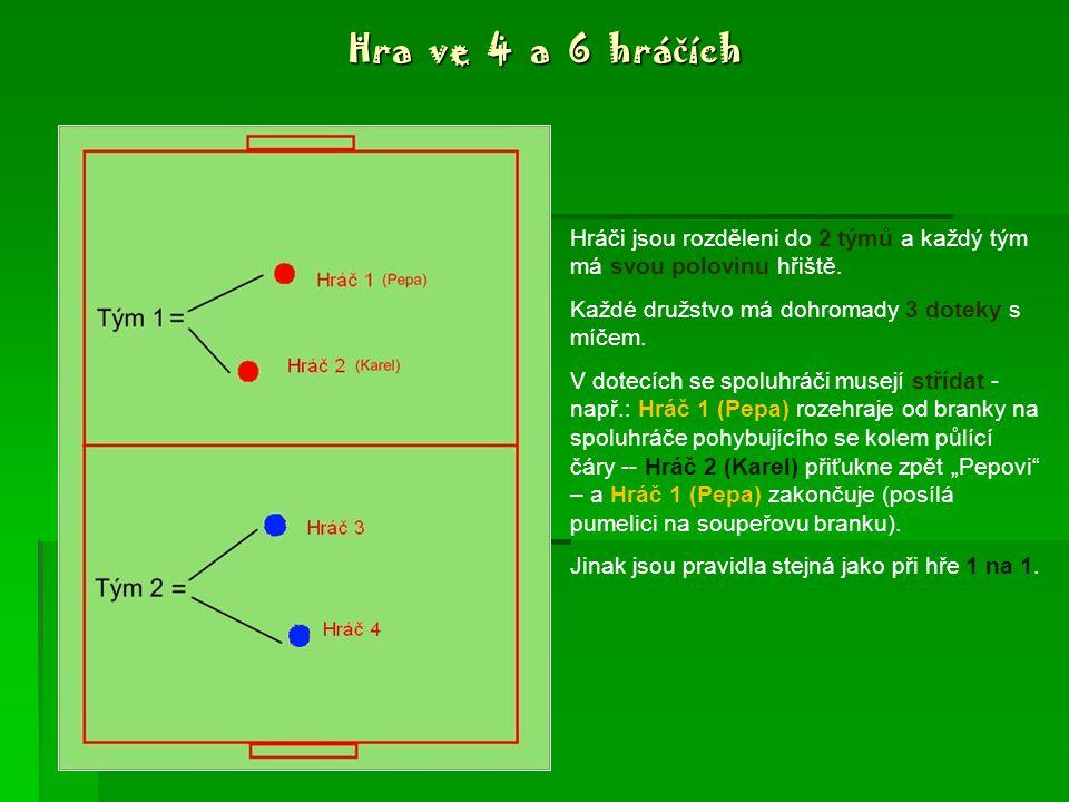 Hra ve 2 hráčích Každý hráč má svou polovinu hřiště, na soupeřovu polovinu nesmí.