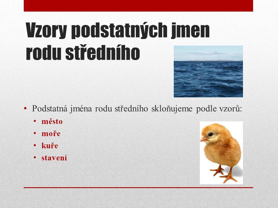Vzory podstatných jmen rodu středního Podstatná jména rodu středního skloňujeme podle vzorů: město moře kuře stavení
