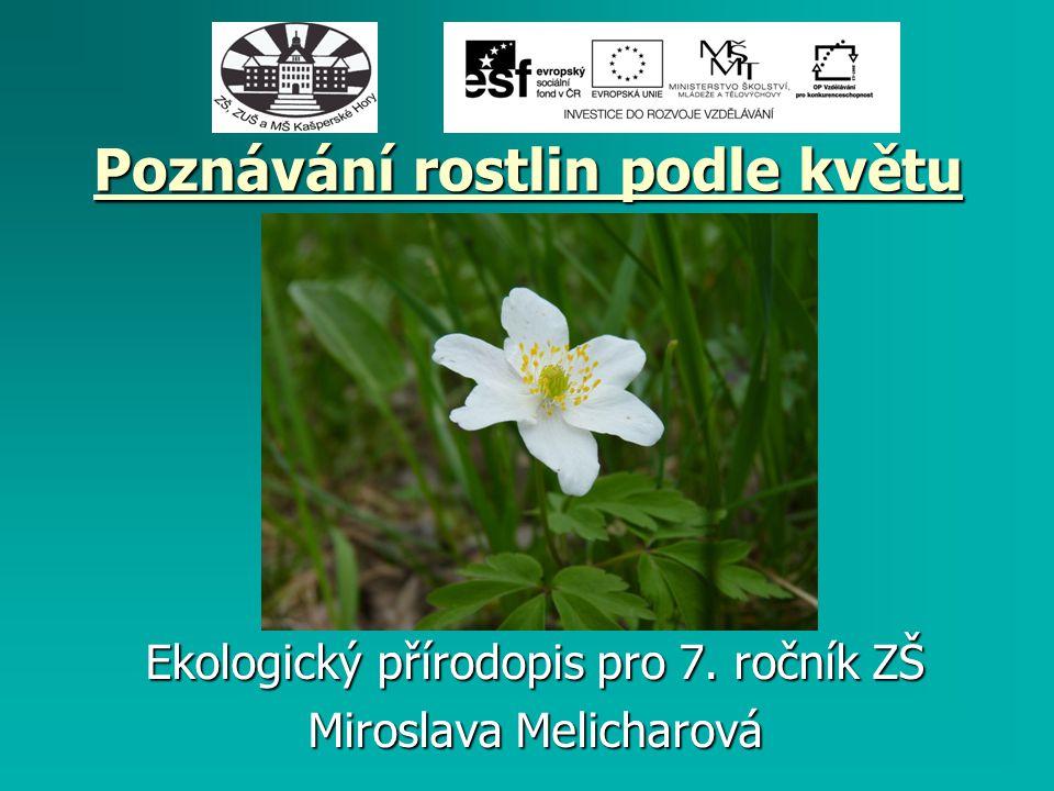 Poznávání rostlin podle květu Ekologický přírodopis pro 7. ročník ZŠ Miroslava Melicharová