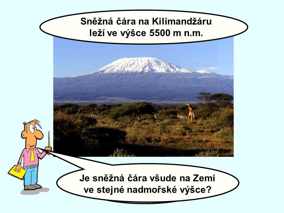 Sněžná čára na Kilimandžáru leží ve výšce 5500 m n.m.