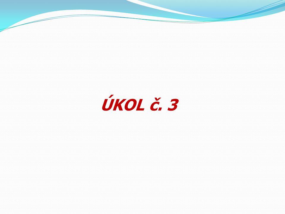 ÚKOL č. 3