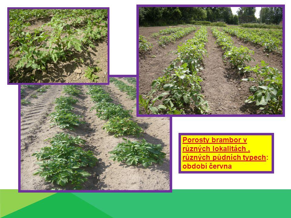 Porosty brambor v různých lokalitách, různých půdních typech: období června