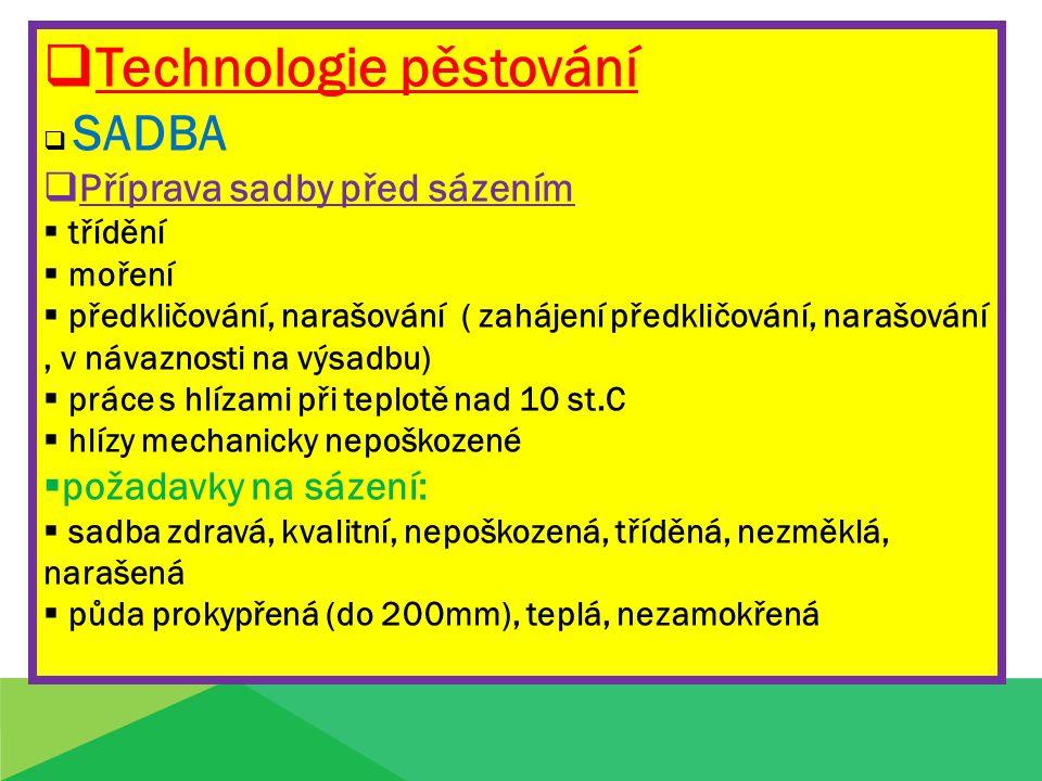  Technologie pěstování  SADBA  Příprava sadby před sázením  třídění  moření  předkličování, narašování ( zahájení předkličování, narašování, v n