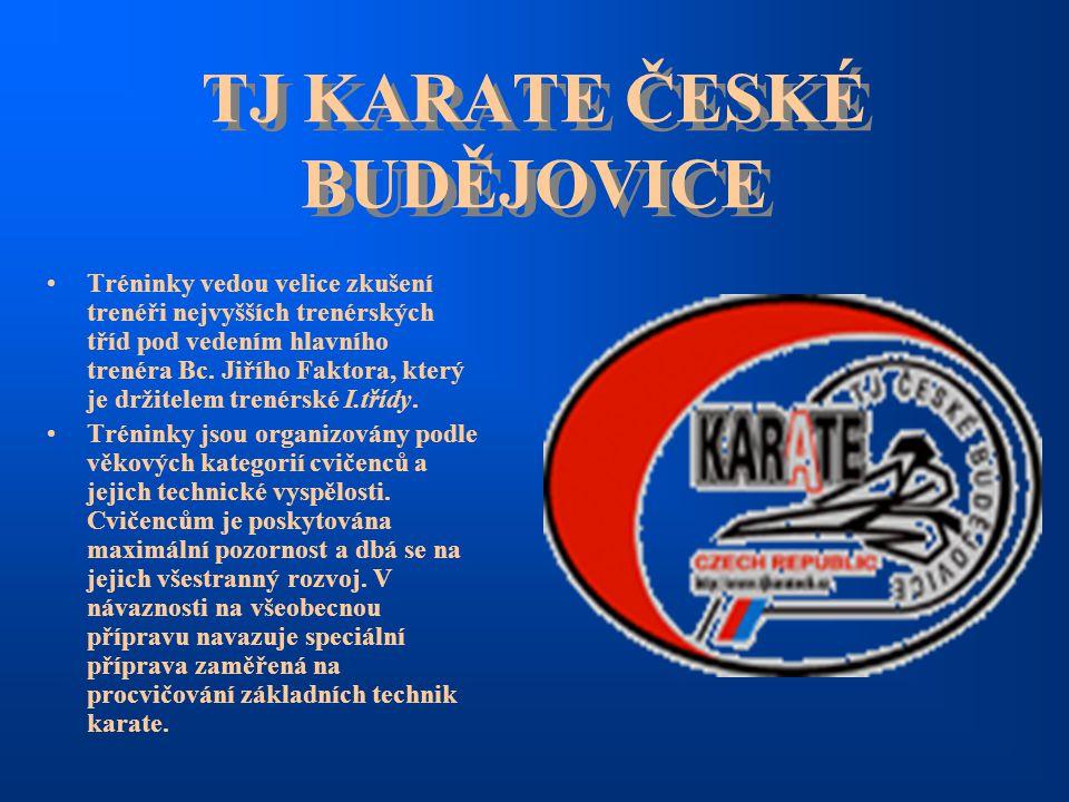 TJ KARATE ČESKÉ BUDĚJOVICE Tréninky vedou velice zkušení trenéři nejvyšších trenérských tříd pod vedením hlavního trenéra Bc. Jiřího Faktora, který je