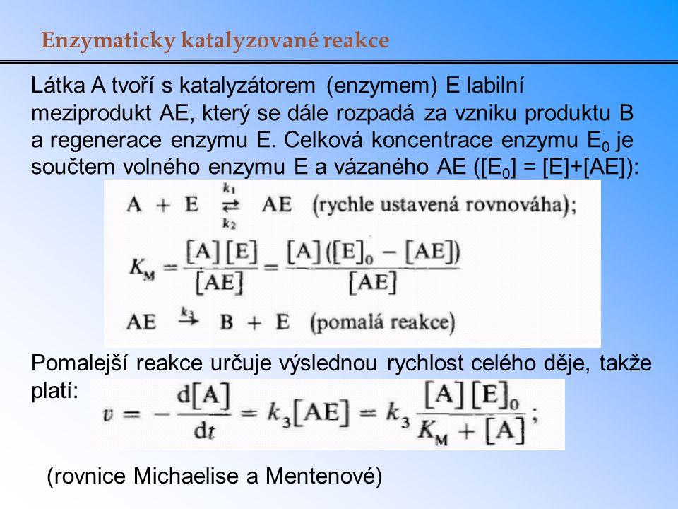 Enzymaticky katalyzované reakce Látka A tvoří s katalyzátorem (enzymem) E labilní meziprodukt AE, který se dále rozpadá za vzniku produktu B a regener
