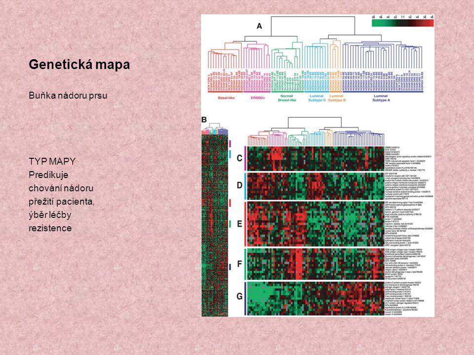 Genetická mapa Buňka nádoru prsu TYP MAPY Predikuje chování nádoru přežití pacienta, ýběr léčby rezistence