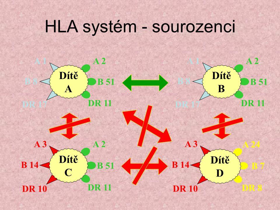 HLA systém - sourozenci A 2 B 51 DR 11 A 1 B 8 DR 17 Dítě A A 2 B 51 DR 11 A 1 B 8 DR 17 Dítě B A 2 B 51 DR 11 A 3 B 14 DR 10 Dítě C A 3 B 14 DR 10 A
