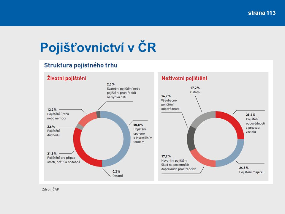 strana 113 Pojišťovnictví v ČR Zdroj: ČAP