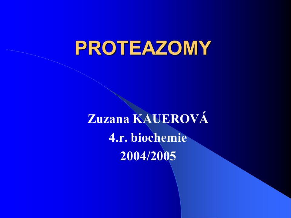 3.2.B 19S struktura Asociována s 20S proteazomy na ATP závislým způsobem 19S víčka jsou prostředníkem mezi ubikvitinovým systémem a 26S proteazomem Složena z 20 různých podjednotek (25 – 110 kDa) Dosud přesně určeno pouze 6 podjednotek 19S struktury s ATPázovou aktivitou, které vytváří prstenec, sousedící s výdutí, ohraničenou α podjednotkami