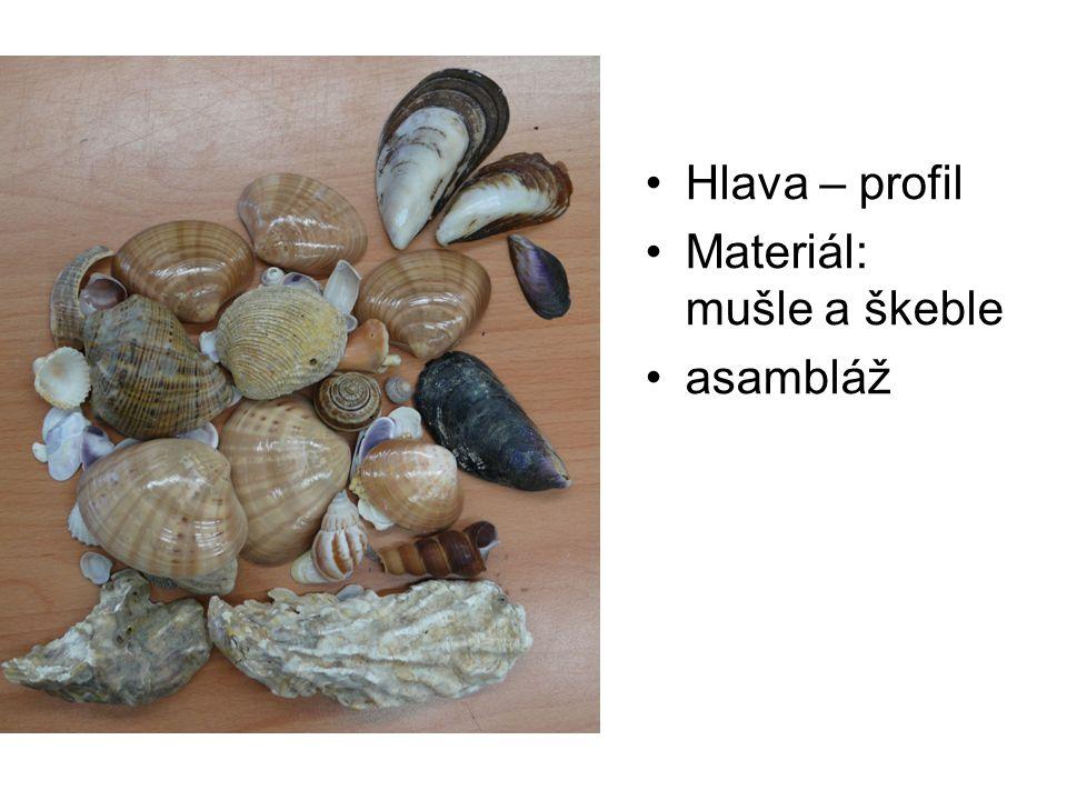 Hlava – profil Materiál: mušle a škeble asambláž