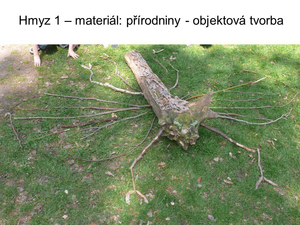 Hmyz 1 – materiál: přírodniny - objektová tvorba