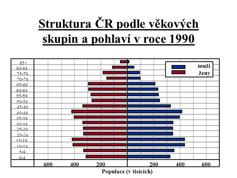 Struktura ČR podle věkových skupin a pohlaví v roce 1990 85+ 80-84 75-79 70-74 65-69 55-59 50-54 45-49 40-44 35-39 30-34 25-29 20-24 15-19 10-14 5-9 0