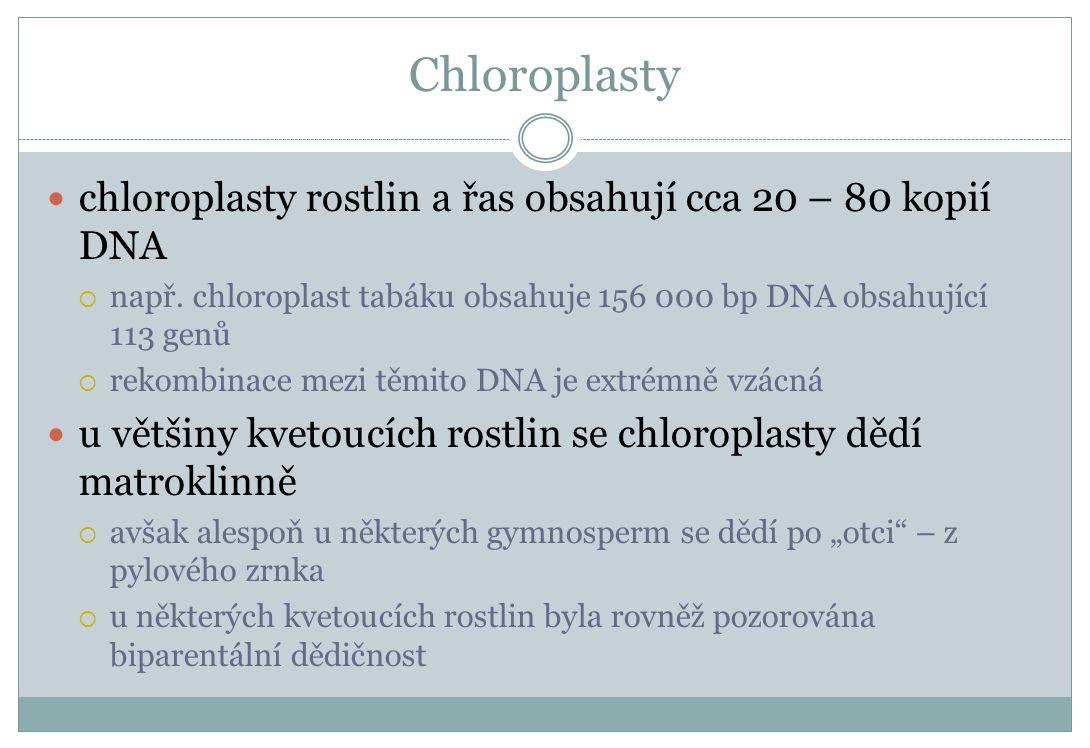 Chloroplasty chloroplasty rostlin a řas obsahují cca 20 – 80 kopií DNA  např. chloroplast tabáku obsahuje 156 000 bp DNA obsahující 113 genů  rekomb