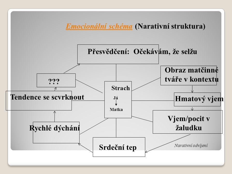 Emocionální schéma (Narativní struktura) Přesvědčení: Očekávám, že selžu ??? Obraz matčinné tváře v kontextu Tendence se scvrknout Strach Já Matka Ryc