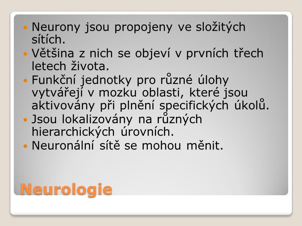 Neurologie Neurony jsou propojeny ve složitých sítích.