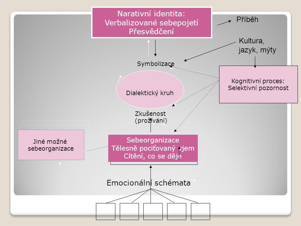 Dialektický kruh Symbolizace Zkušenost (prožívání) Emocionální schémata Sebeorganizace Tělesně pociťovaný vjem Cítění, co se děje Jiné možné sebeorgan