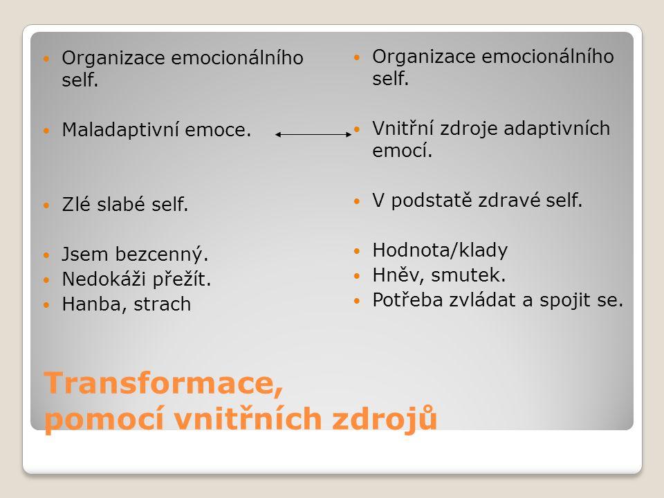 Transformace, pomocí vnitřních zdrojů Organizace emocionálního self. Maladaptivní emoce. Zlé slabé self. Jsem bezcenný. Nedokáži přežít. Hanba, strach