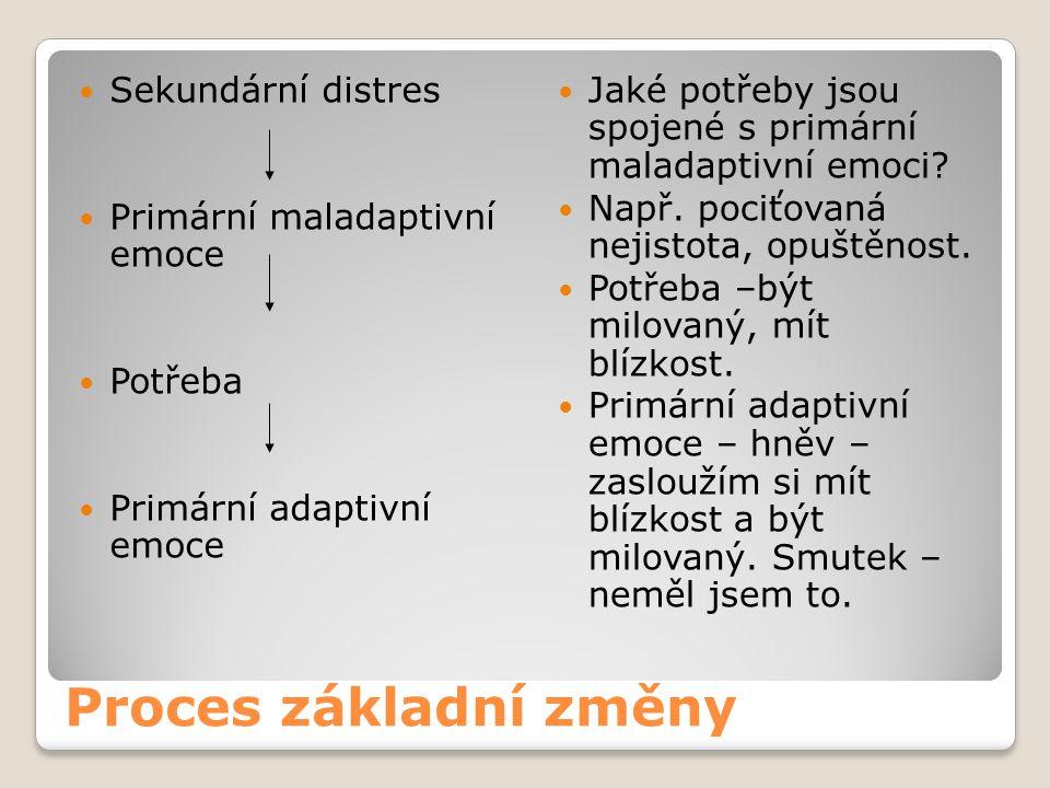 Proces základní změny Sekundární distres Primární maladaptivní emoce Potřeba Primární adaptivní emoce Jaké potřeby jsou spojené s primární maladaptivní emoci.