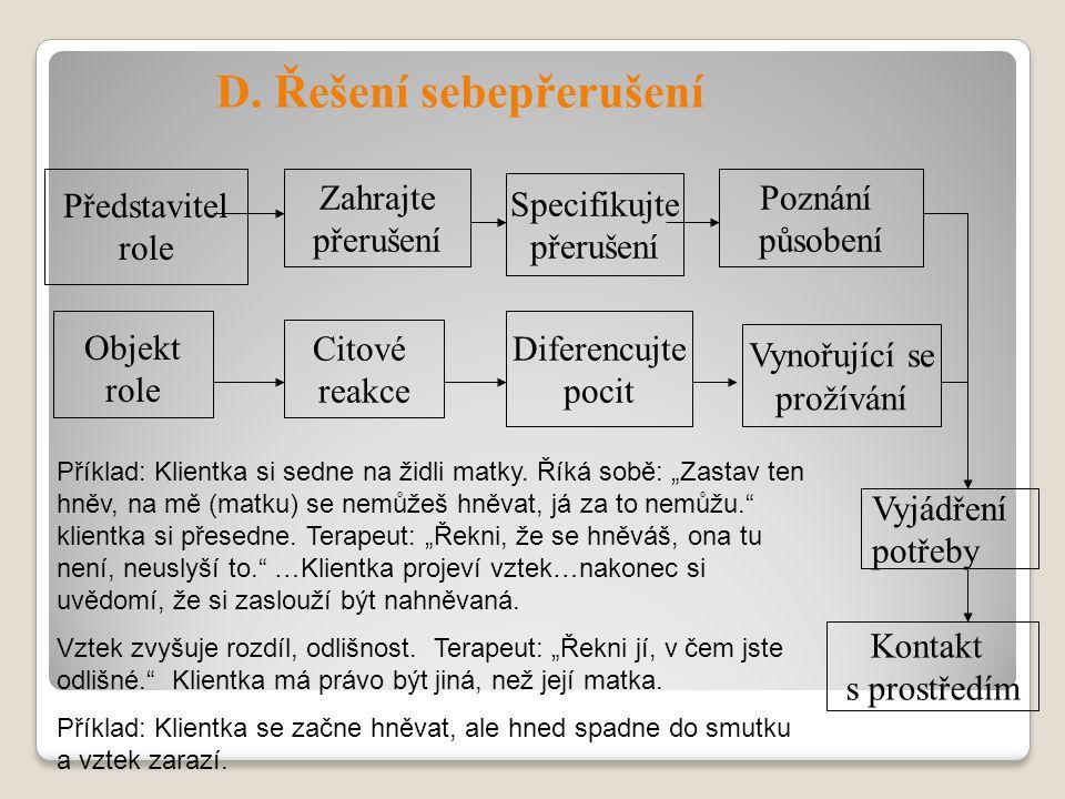 Objekt role Zahrajte přerušení Specifikujte přerušení Diferencujte pocit Vynořující se prožívání Poznání působení Vyjádření potřeby Kontakt s prostřed
