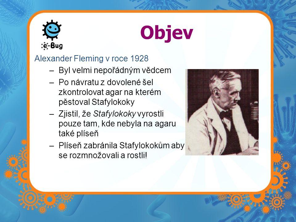 Objev Alexander Fleming v roce 1928 –Byl velmi nepořádným vědcem –Po návratu z dovolené šel zkontrolovat agar na kterém pěstoval Stafylokoky –Zjistil, že Stafylokoky vyrostli pouze tam, kde nebyla na agaru také plíseň –Plíseň zabránila Stafylokokům aby se rozmnožovali a rostli!