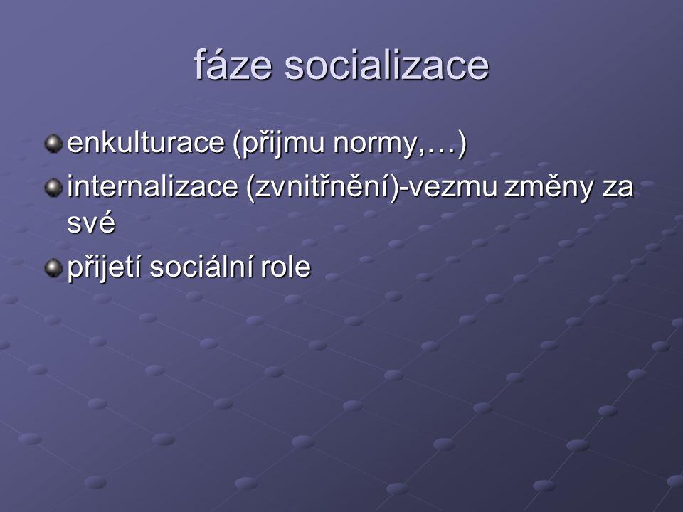 fáze socializace enkulturace (přijmu normy,…) internalizace (zvnitřnění)-vezmu změny za své přijetí sociální role